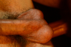 gbs0015-growlboys-gay_furry_porn_pup_play_transformation-pic07